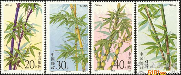 1993-7 竹子图片